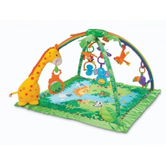 Deluxe Baby Gym